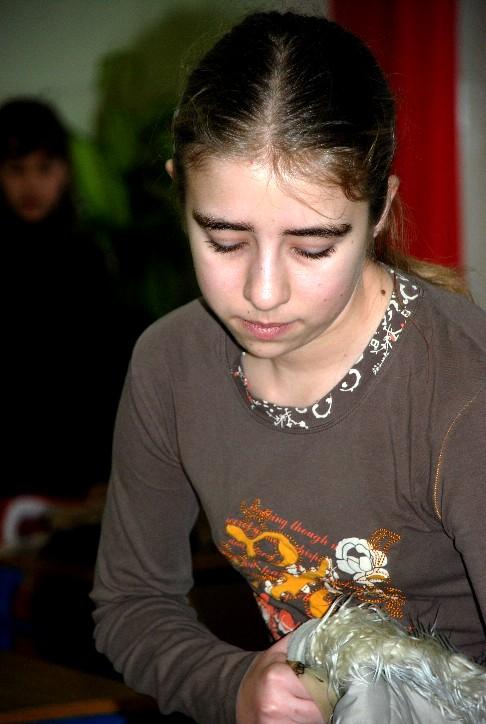 zabka-2007-08-ii-etap-31
