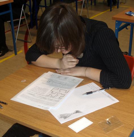 zaba-2008-09-ii-etap-25